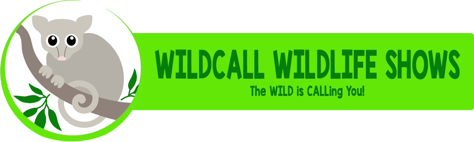 Wildcall Wildlife Shows
