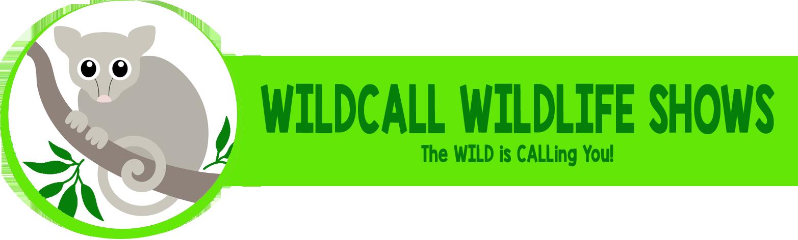 Wildcall Wildlife Shows