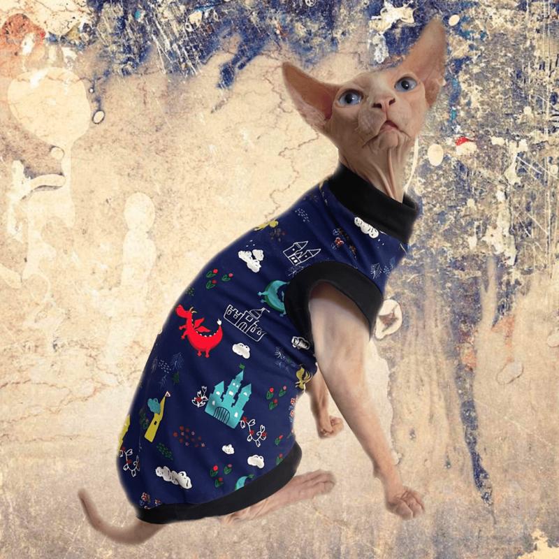Castles & Dragons - Cat Shirt