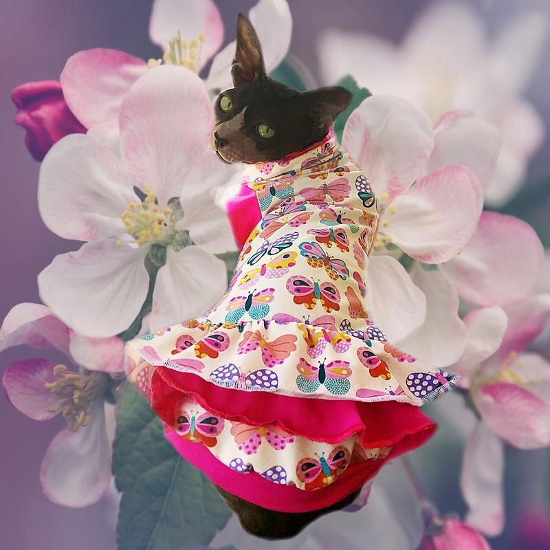 Butterfly Kisses - Cat Dress
