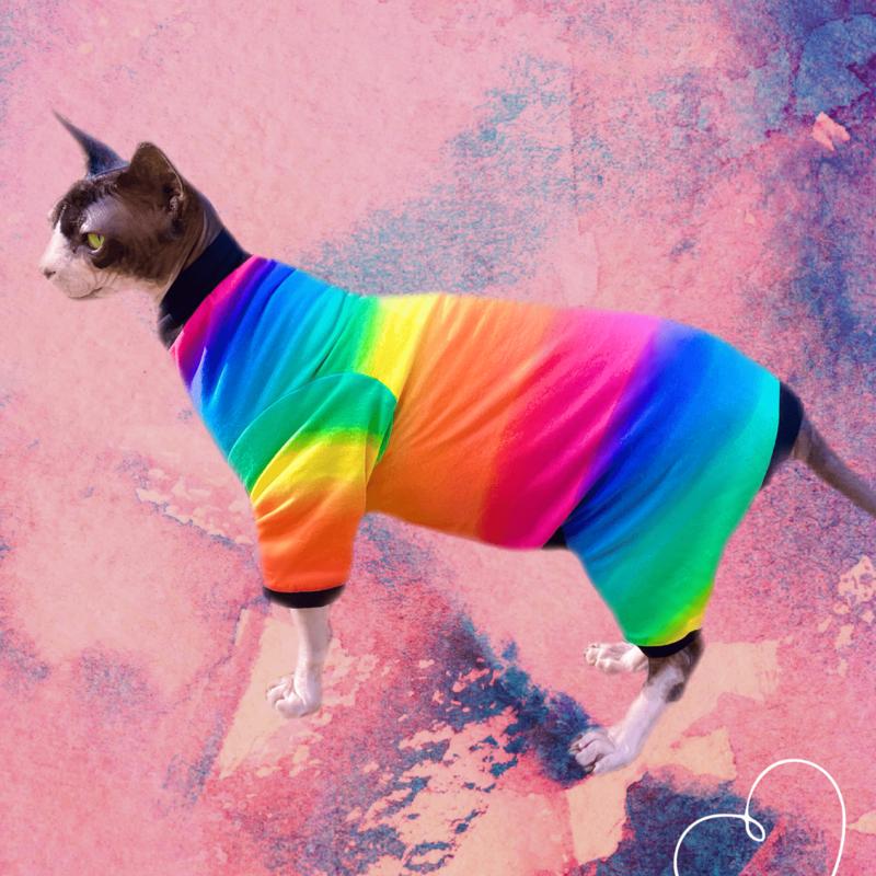 Radiant Rainbow - Catsuit
