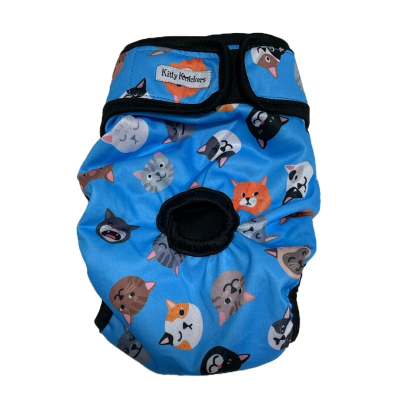 Blue - Kitty Knickers