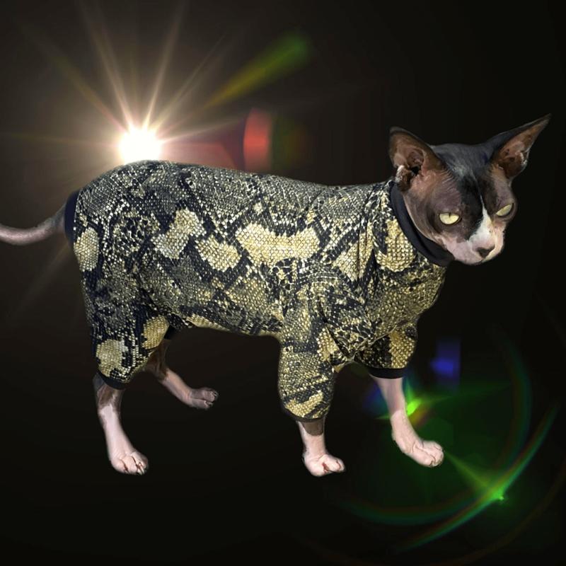 Snake Charmer - Catsuit