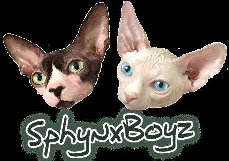 SphynxBoyz - Online cat clothing store for breeds such as Sphynx, Devon Rex, Cornish Rex, Siamese, Orientals, etc.