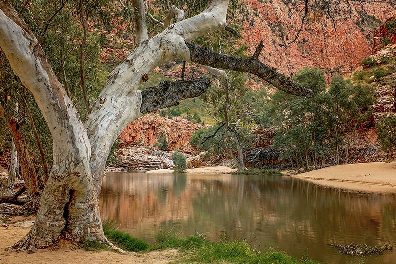 Ormiston Gorge 'Autumn Reflections' Art Print