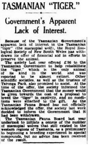 Tasmanian Tiger government's apparent lack of interest