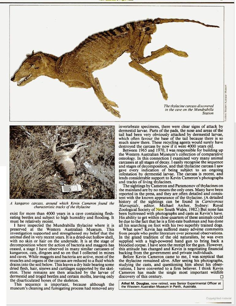 Thylacine, Athol Douglas, Kevin Cameron, Mainland.