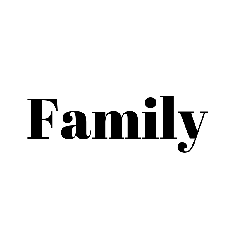 1x Family Admission